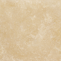 Aspendos Travertine Tile  (Honed, Filled)