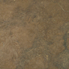 Chocolate Shell Limestone Tile